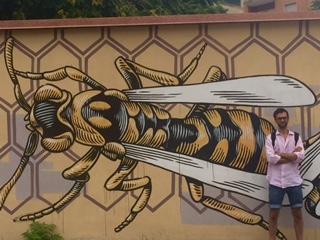 1-nido di vespe