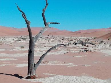 deserto-di-sale2
