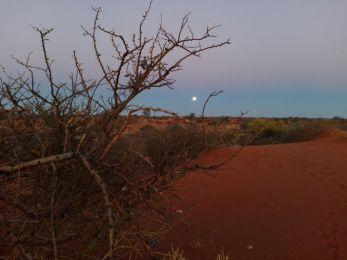 tramonto-al-kalahari